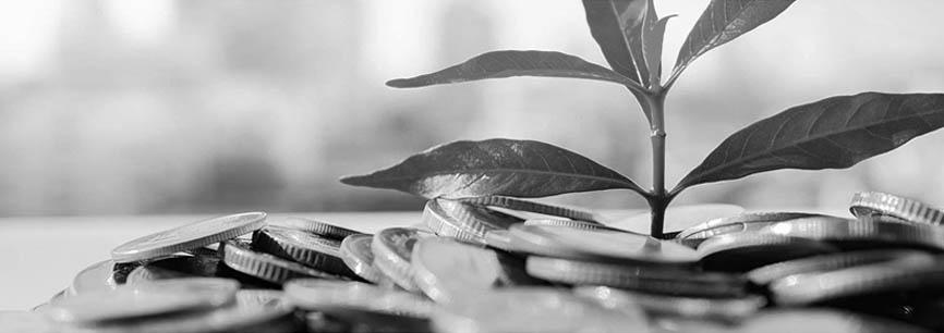 grant-funding-img